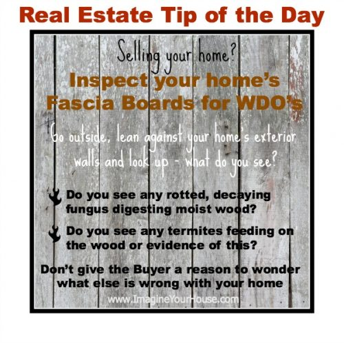 Inspect your home's fascia boards