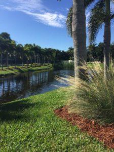 Boca Raton Real Estate
