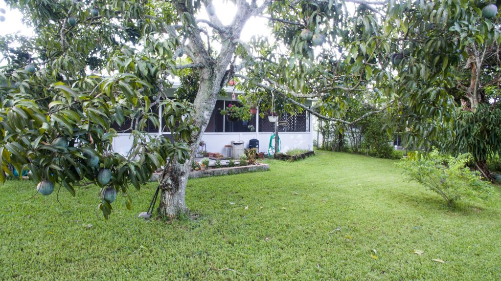 1200 coral springs-A--16