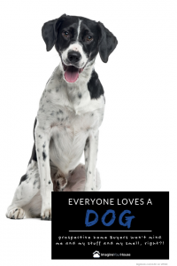 how can i sell my home with a dog